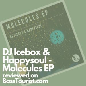 DJ Icebox & Happysoul - Molecules EP